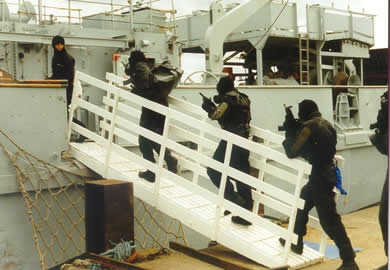 Image of maritime security